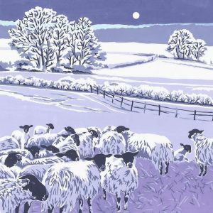 Flocks By Night Christmas Cards