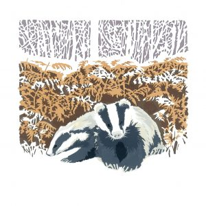 Nocturnal - Badger Square Blank Card