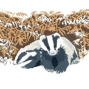 Nocturnal - Badger Christmas Cards