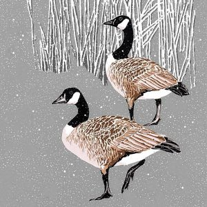 Canada Geese Christmas Cards
