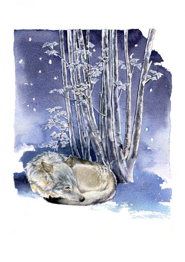 """Eurasian Wolf - 7""""x5""""Christmas Cards"""