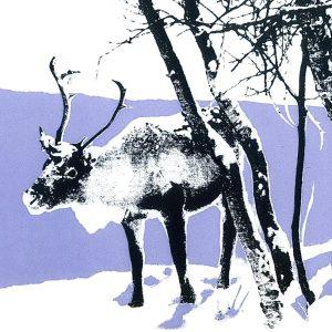 Kim's Reindeer Christmas Cards
