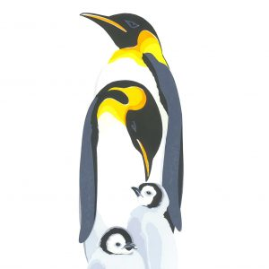 King Penguins Christmas Cards