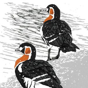 Red Breasted Geese Christmas Cards