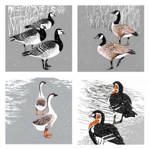 Assorted Winter Geese - Acetate box of 8 Christmas cards - two of each design