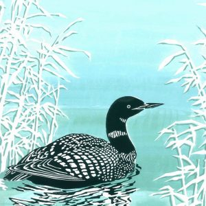 Black Throated Diver - Square Blank Card