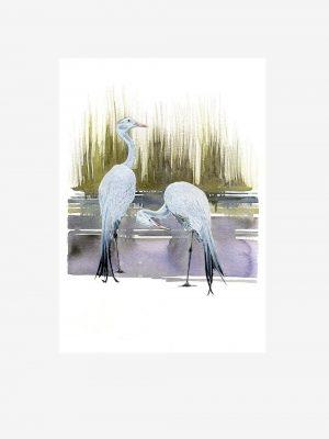 Blue Cranes - Original Watercolour