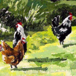 Cocks & Hen - Notelets