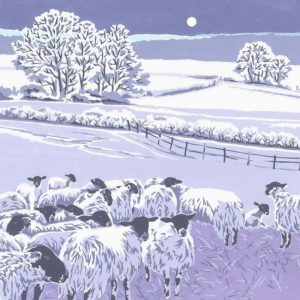 Flocks by Night - Square Blank Card