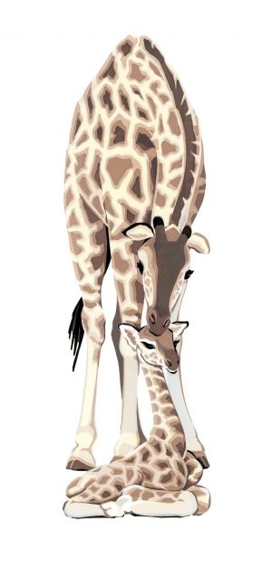 Giraffes Portrait Blank Card