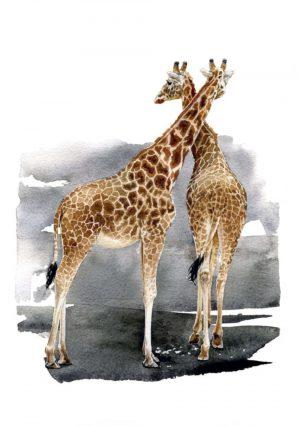 Giraffes – Portrait Blank Card