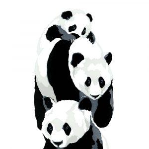 Panda Stack - Square Blank Card