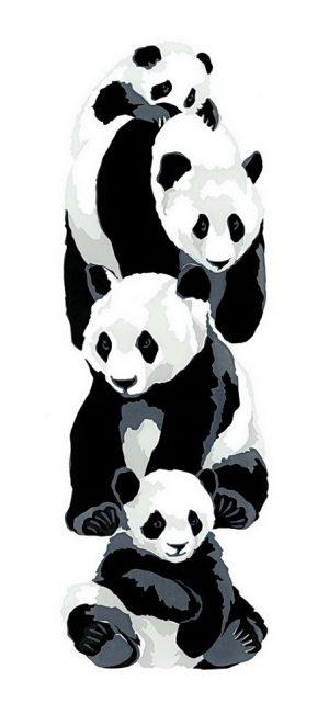 Pandas - Portrait Blank Card