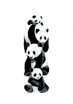 Pandas - Studio Print
