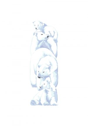 Polar Bears - Studio Print