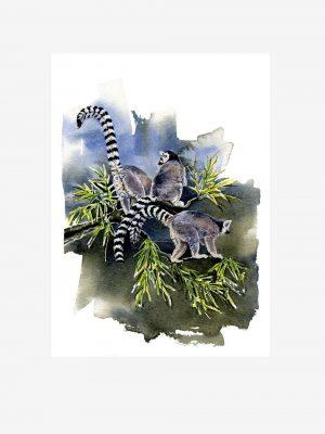Ring-tailed Lemurs - Original Watercolour