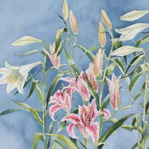 Stargazer Trumpet Lilies - Square Blank Card