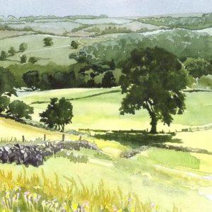Summer Landscape - Square Blank Card