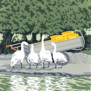 Swan Feed - Square Blank Card