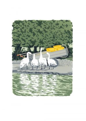 Swan Feed - Studio Print