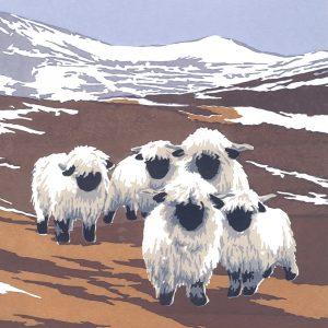 Valais Black-nosed Sheep - Square Blank Card