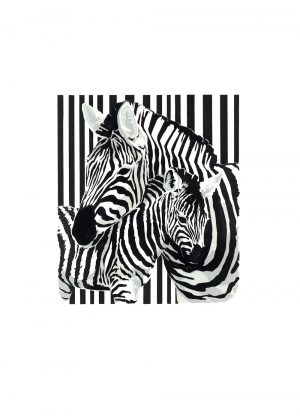 Zebra Dazzle - Studio Print