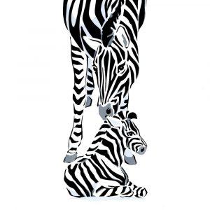 Zebras - Square Blank Card