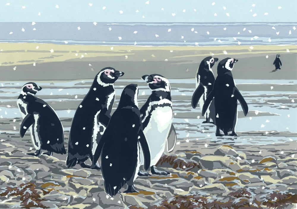 Snowy Magellanic Penguins - A5 Christmas Card