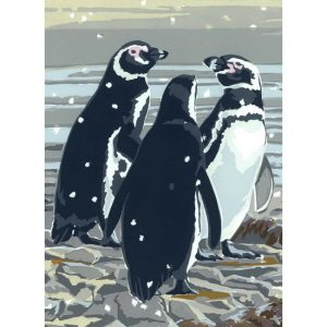 Fancy a Swim? Pack of 5 Christmas Cards